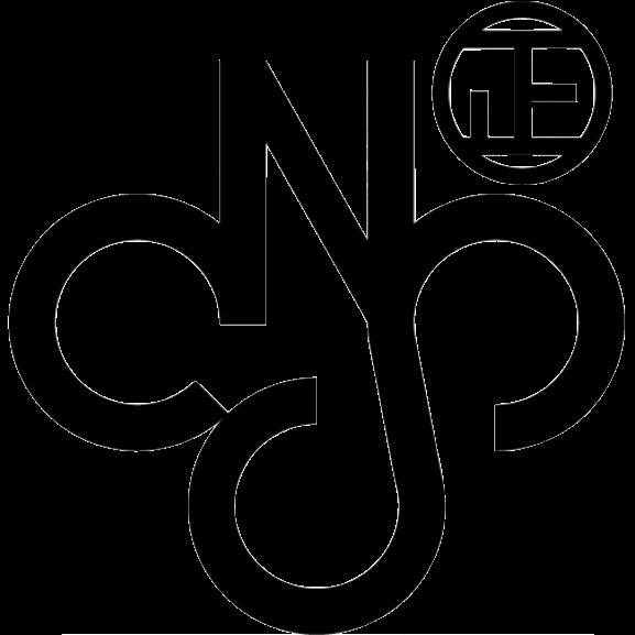 CNS_standard
